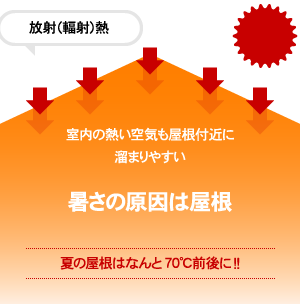 index_roof_img